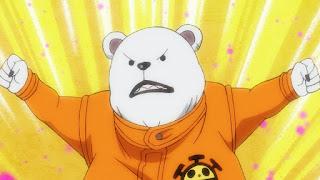 ワンピースアニメ ワノ国編   ハートの海賊団 ベポ かわいい   ONE PIECE Heart Pirates