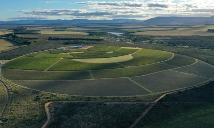 Vinícola será inaugurada na Chapada Diamantina com projeto da arquiteta Vanja Hetcert