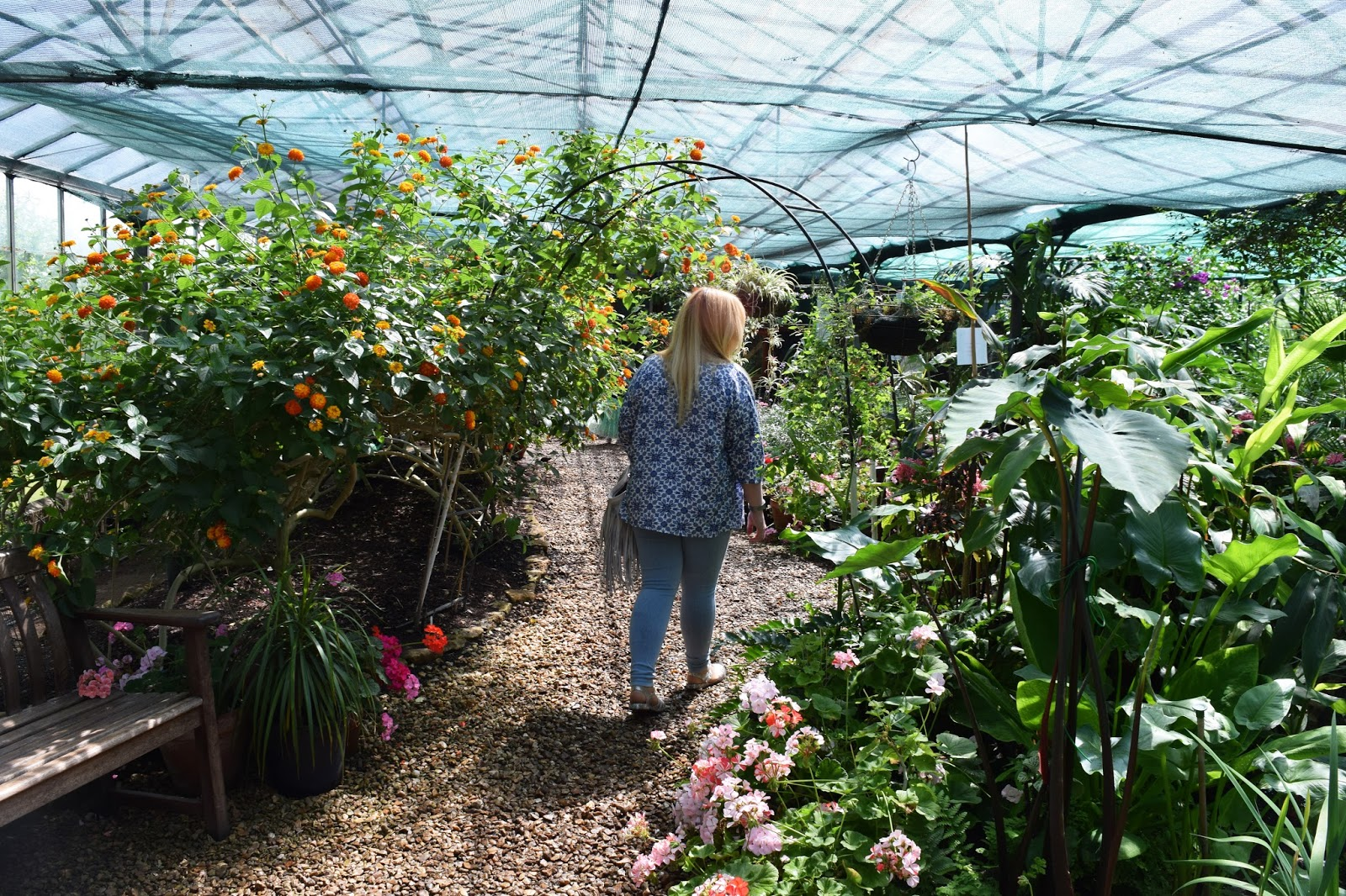 myself walking through an arch inside the butterfly farm. I an surrounded by plants and flowers