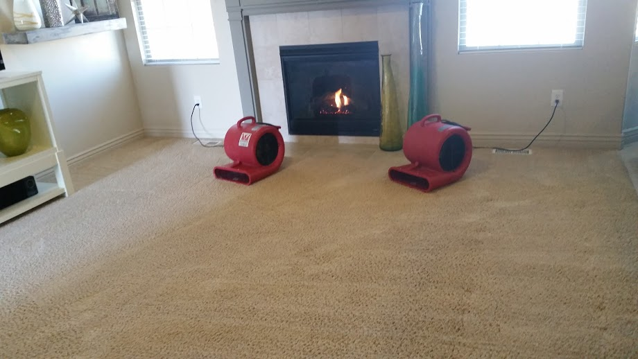 your home when we are carpet cleaning because it is just the little thing we do that are going to make a difference when we are cleaning your home
