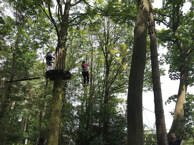 Go Ape cargo net in the trees