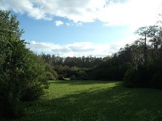 Zonas naturales