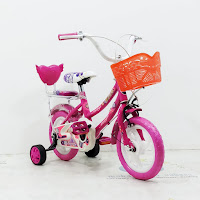 Sepeda Anak Asagi  Eva Girl