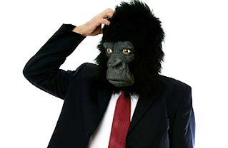 http://1.bp.blogspot.com/-p8VFK9f3NJw/To3lpzgy2zI/AAAAAAAACA4/kXKPXgVRGCw/s1600/confused-gorilla-man.jpg
