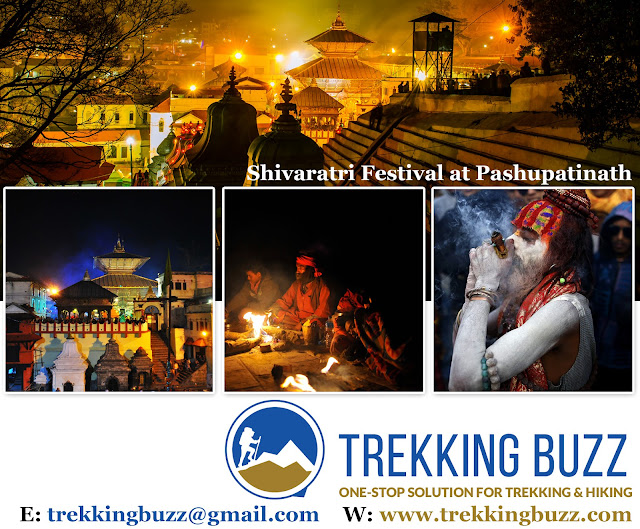 Pashupatinath Shivaratri Festival