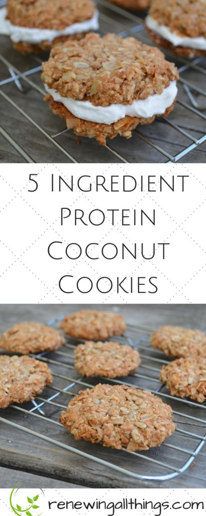 5 Ingredient Protein Coconut Cookies #5ingredient #protein #coconut #cookies #cookierecipes #healthyfood #healthyrecipes #snackrecipes #healthycookies #easysnackrecipes