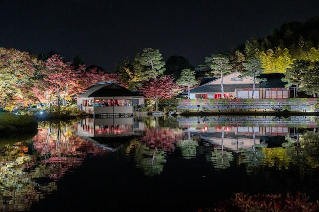 昭和記念公園,紅葉,構図