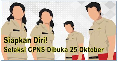 Siapkan Diri! Seleksi CPNS Dibuka 25 Oktober