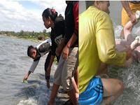Oppung, patarida ma ibana?... Oci manik tenggelam di Danau Toba, Berikut kronologinya