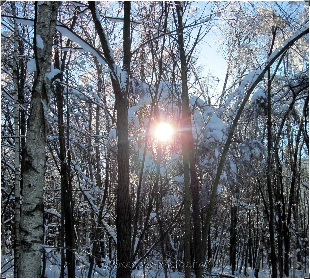Snowy Russian Winter