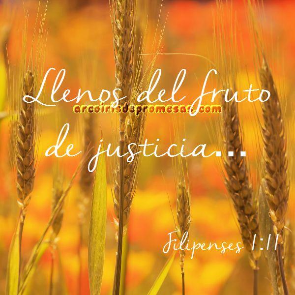 producir frutos de justicia devocionales cristianos