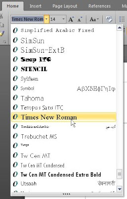 font style Times New Roman