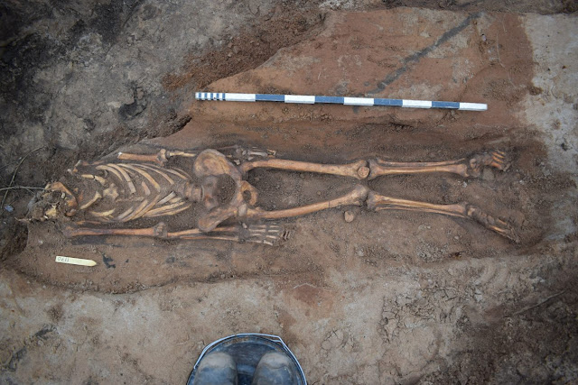 Thousands of Medieval skeletons found in Swedish Abbey