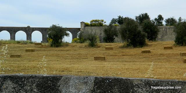 Muralhas de Évora, Cerca Nova