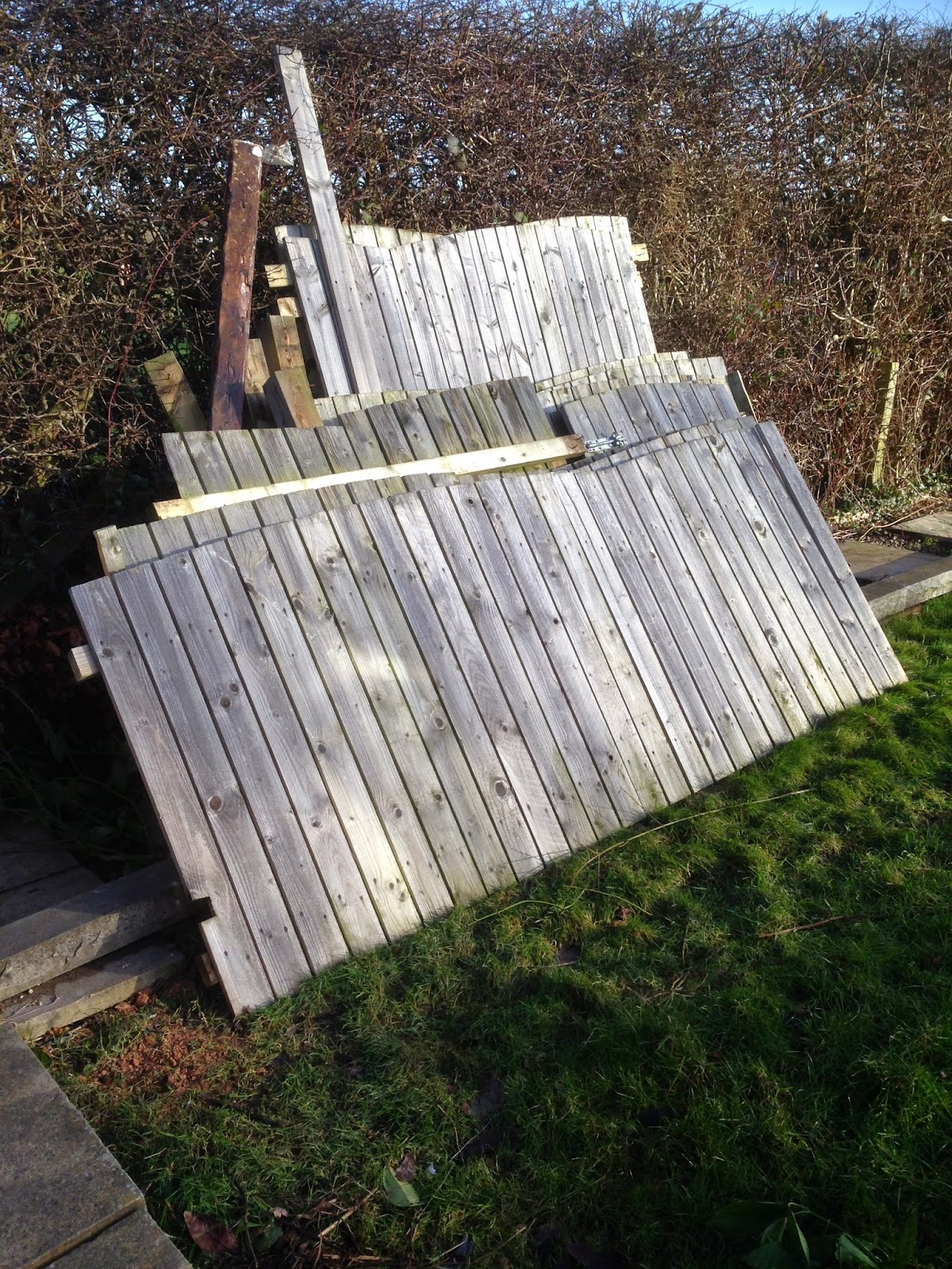 The Yorkshire Dad Blog    : My Garden Renovation Project