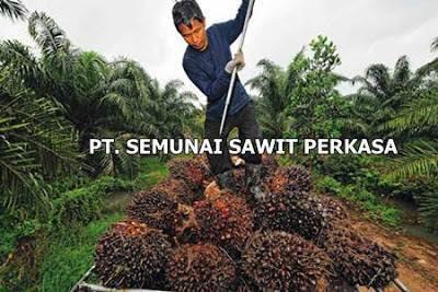 Lowongan PT. Semunai Sawit Perkasa Pekanbaru Agustus 2019