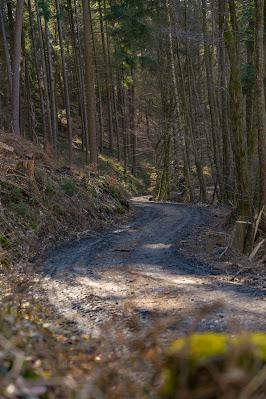 Eschbacher Klippen und Maibacher Schweiz | Wanderung rund um Michelbach im Taunus 24