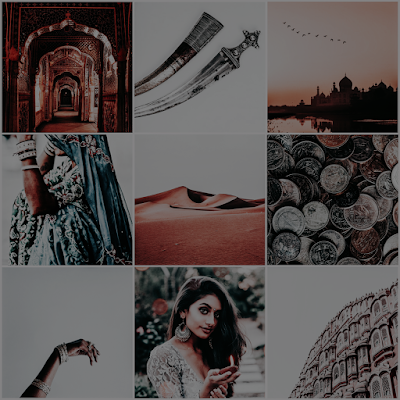 hunted by the sky tanaz bhathena moodboard aesthetic