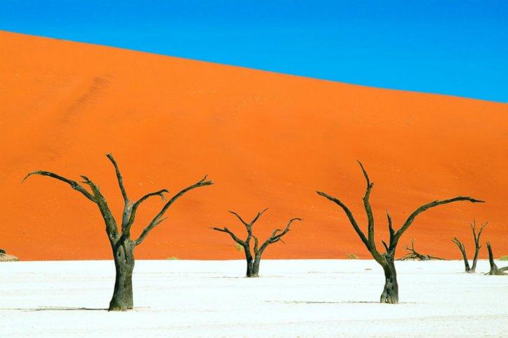 ¿Pintura o Realidad? Dunas en Namibia 3