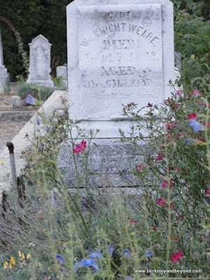 more flowers amid the graves at Pine Grove Cemetery in Nevada City, California