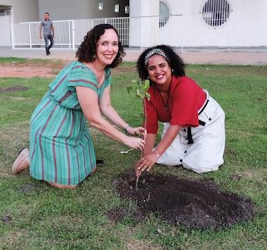 Bosque Moçambique: 9ª Bienal homenageia país africano com área verde na Ufal
