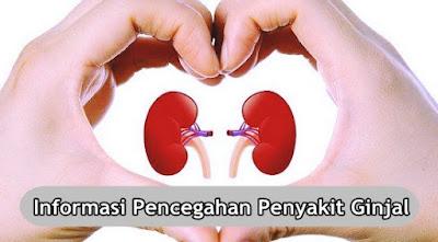 Informasi Pencegahan Penyakit Ginjal