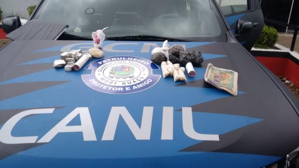 Cadela Babi ajuda Guarda Municipal a encontrar drogas em Mogi Guaçu