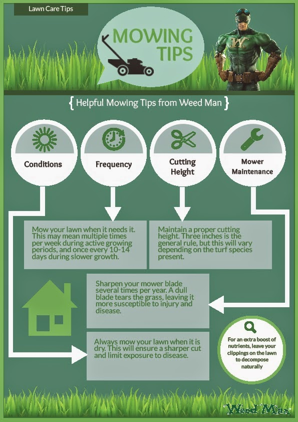 Weed Man Lawn Care Of The Twin Cities