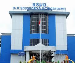Jadwal Dokter RSUD Dr. R. Sosodoro Djatikoesoemo Bojonegoro