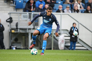 Malian midfielder does not want Hoffenheim star to play Super Eagles