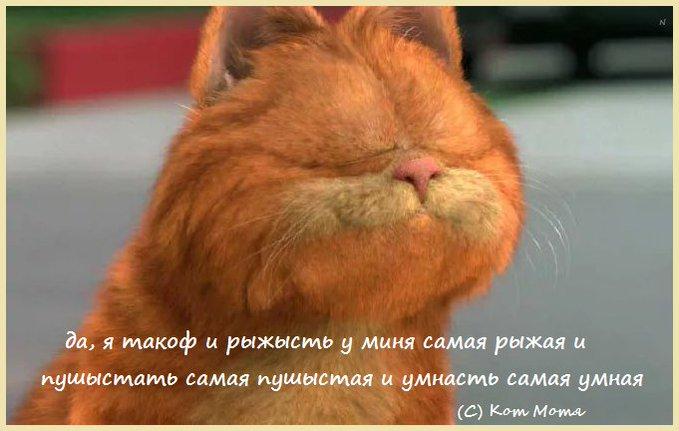 Блог Кота Моти  - Страница 3 EvAf5jwXIAkpAlg