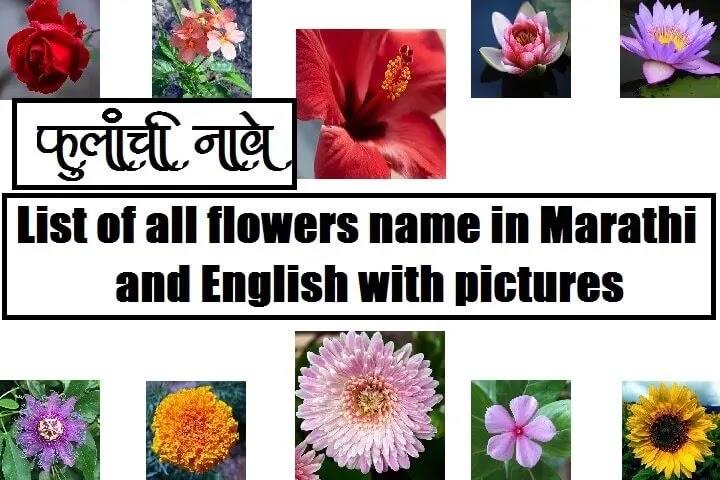 फुलांची नावे, Flowers names in Marathi