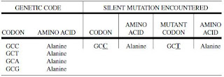 Examples of Mutational Events Silent Mutation