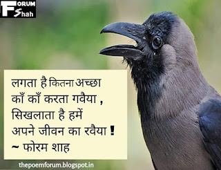 Crow poetry