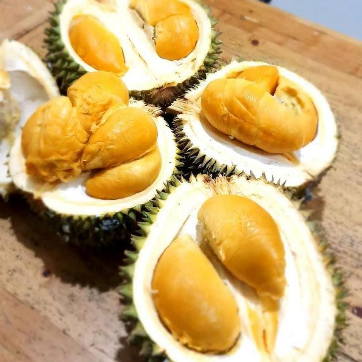 bibit durian duri hitam ochee kaki 3 cepat berbuah Banjarbaru