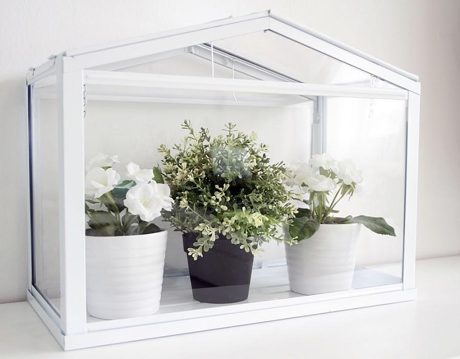 Invernaderos para jardines especiales plantas - Invernadero para terraza ...