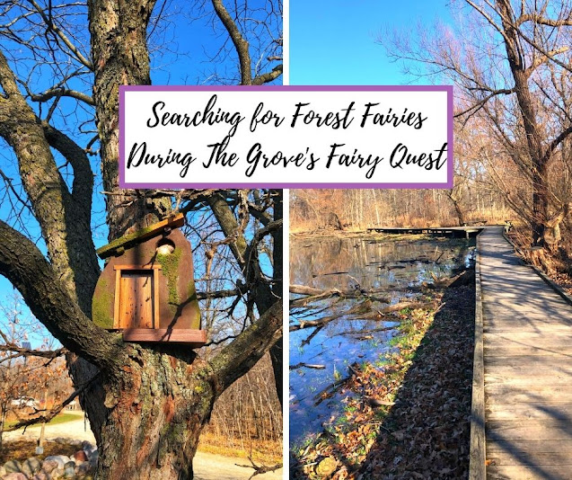 Searching for Forest Fairies During The Grove's Fairy Quest