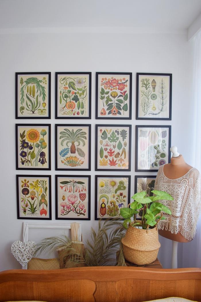 DIY - Galeria obrazów z książki Botanicum Kathy Willis, Katie Scott