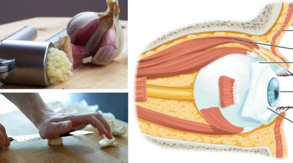 How To Use Pressed Garlic To Reverse Eyesight Loss Without Glasses or Surgery