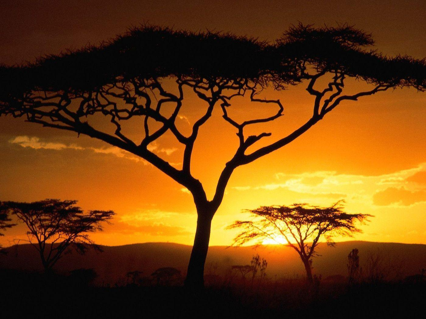 Tanzanian Sunset, Africa desktop wallpapers Nature HD Wallpapers