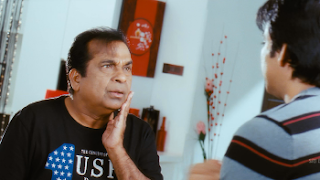 Balupu (Jani Dushman) (2013) {Hindi+Telugu} 720p Dual Audio Hindi Bluray || 7starHD