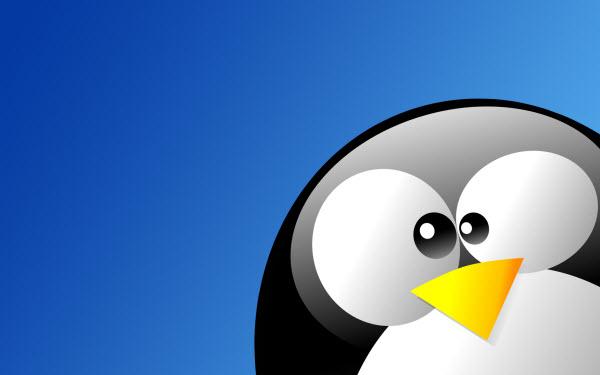 لماذا علي استخدام نظام التشغيل لينكس مع نظام التشغيل ويندوز في آن واحدٍ؟