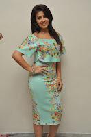 Nikki Galrani in Cute Dress Dress At Marakathamani Success Meet ~  Exclusive 010.JPG