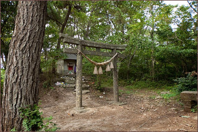 Neko jinja cat shrine cat island japan
