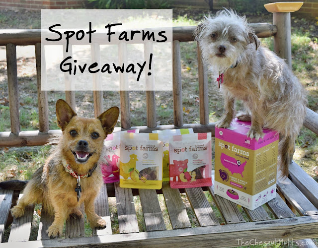 Giveaway: Spot Farms