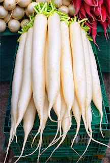 It is beneficial to treat diabetes, BP and hemorrhoids radish, learn its benefits