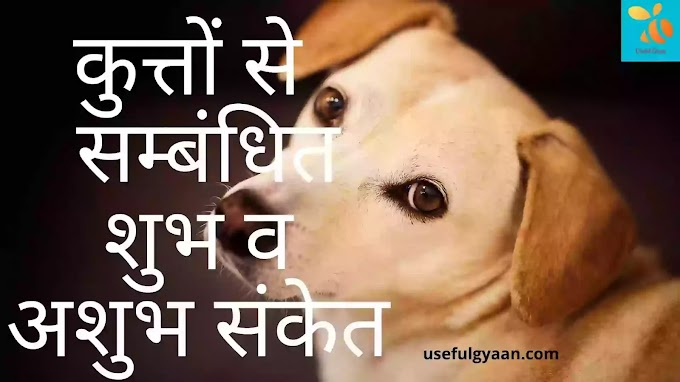कुत्तों  से सम्बंधित  शुभ व अशुभ संकेत kutte ke sanket