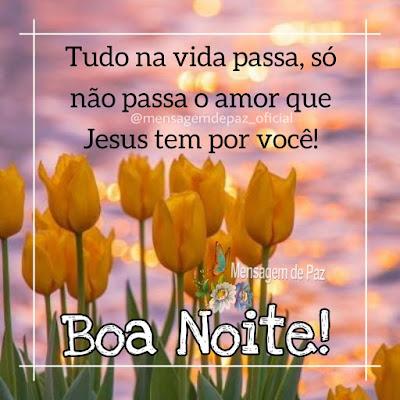 Tudo na vida passa, só não passa o amor que Jesus tem por você! Boa Noite!