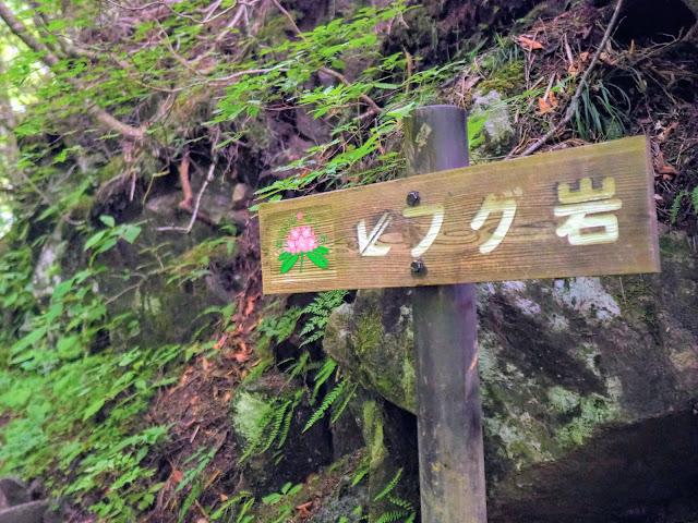西沢渓谷 フグ岩看板