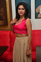 Akshita super cute Pink Choli at south indian thalis and filmy breakfast in Filmy Junction inaguration by Gopichand ~  Exclusive 058.JPG